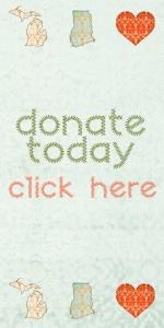 Michigan to ghana donate button